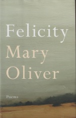 felicity cover